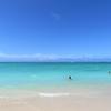 全米No1ビーチのあるカイルアは新婚旅行にピッタリ!