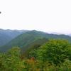奥多摩(高水三山)の花々(4)   2011.7.6        2014.5.3,    5.26
