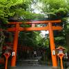 貴船神社🌿七夕笹飾り。