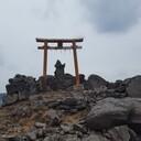 神社の歩き方