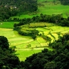 Beautiful Places Near Bangalore To Cherish The Flavor Of Winter