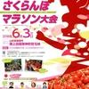 第17回果樹王国 ひがしねさくらんぼマラソン大会