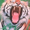 ジャングルの王 entry62