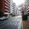 にちよ記(桜台を歩く)