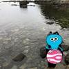 もうすっかり秋ですが…夏休みに家族で行った泊村の海水浴が良かった