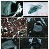 20/06/2017『Hole in Antarctic 南極の穴』#かもし(Original Piano オリジナル ピアノ)