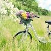 空き巣と自転車と独居老人と