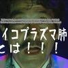 マイコプラズマ肺炎 VS たまねぎ  (追記有り)