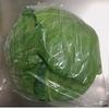 《キャベツやほうれん草など》葉物野菜の鮮度を長持ちさせるポリ袋保存の方法。