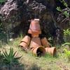 シセンレッサーパンダ、スマトラオランウータンなどを飼育をしている「市川市動植物園」!