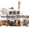 中国の豚でのクリプトスポリジウムの有病率についての報告