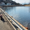 直島の調整池(香川県直島)