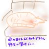 ネコは雨だとよく寝るのが自然