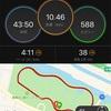 全力練で10kmペース走【2020/01/05午前ラン】