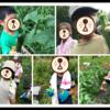 第1回ー夏休み特別校外学習ー@宝塚市西谷地区の畑 お昼はラーメンを作りました☆