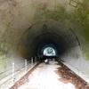 林道川乗線と日向沢線!踊平トンネルを通行してみた。