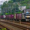 6月14日撮影 東海道線 大磯~二宮間 貨物列車撮影 1070ㇾ 1050ㇾ
