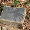 万葉歌碑を訪ねて(その355)―東近江市糠塚町 万葉の森船岡山(96)―