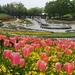 花々が美しい!国営みちのく杜の湖畔公園の写真