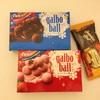 歴史あるチョコたち〜ガルボとハワイアンホースト