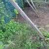 ぶどう棚下の除草