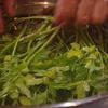 天然のセリ、春の水炊きにおすすめ! 神戸三宮のお鍋は安東へ