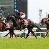 ざっくりと京都新聞杯2019