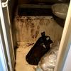孤独死現場の特殊清掃料金 リスクベネフィット