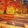 涼しくなってきたし、〇〇の秋をやりたい