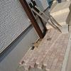 外構工事26日目~機能門柱とインターホン取り付け