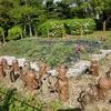 【世界遺産登録】大仙公園|仁徳天皇陵で令和のご挨拶【2歳おでかけ】