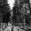 高野山で星見キャンプ #4