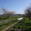 農園散歩&ミーティング