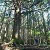 8月最終週は近場の武甲山へ