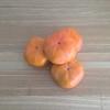 いちばん好きな柿は、次郎柿