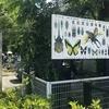 【虫注意】岐阜の名和昆虫博物館へ行ってきました。