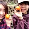【 学生体験記 】みかん農家さんでの初めてのワーホリ体験🍊