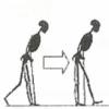 脳卒中の歩行訓練はまず体幹に介入する!