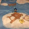 LIONさんの「年末大洗濯キャンペーン」に当選したよ!