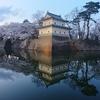 桜と城 さかさ城 🌸