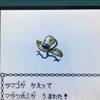 【色違いポケモン紹介】VC産マダツボミ