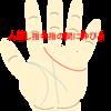 感情線が人差し指と中指の間にのびる人が恋愛や人付き合いで気を付けること