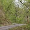 飛騨の春景色【大倉の滝付近】