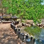 「ターパーイ温泉 (Tha Pai Hot Spring)」~パーイ郊外の自然温泉に歩いて行く!!