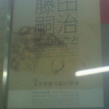 没後50年藤田嗣治本のしごと 文字を装う絵の世界 Léonard Foujita Private on Works