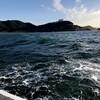 石川丸で秋のウタセ五目釣り プロローグ