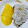 【今日の食卓】カオニャオ・マムアン(餅米のココナッツミルク煮マンゴー添え)~いつもとちょっと違って赤飯みたい?