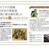ナンダ・コート初登頂80周年記念登山隊が無事帰国しました!