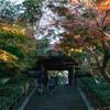 秋の鎌倉を撮り歩いてみた