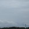 ◆7/29          月山森まで①…植物たちイキイキ
